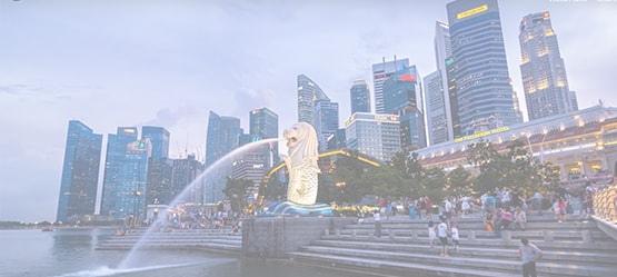 Singapore Packages Video